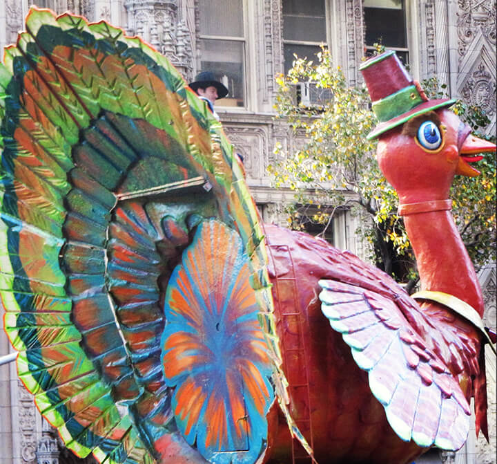 Tom the Turkey is a colorful, animatronic turkey with two pilgrims that ride atop him.